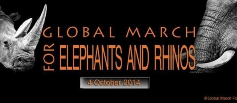 Global March for Elephants and Rhinos - Harare Zimbabwe