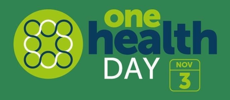 One Health Day, Kenya