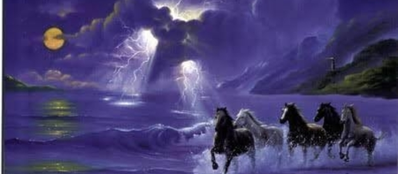 HORSE WISDOM RETREAT hosted by Rene de Beer (084) 5023813