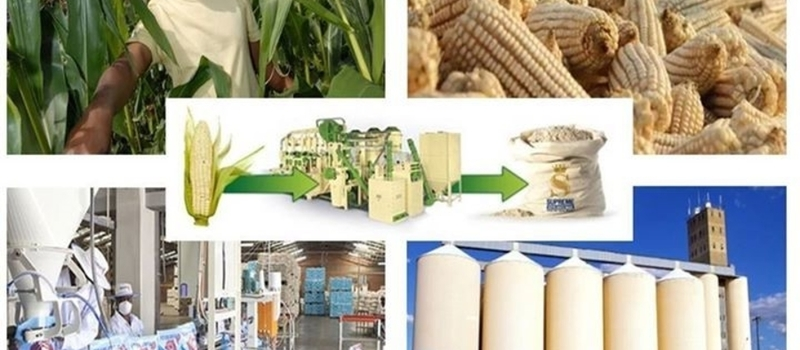 The Maize Value Chain Conference