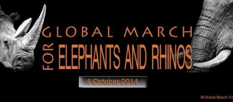 Global March for Elephants & Rhinos Accra