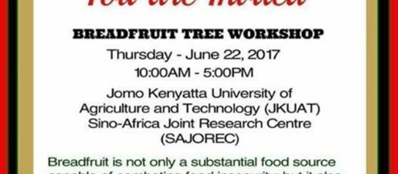 Kenya Breadfruit Workshop