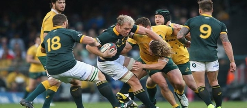 LIVE South Africa vs Australia Live Online Rugby Championship