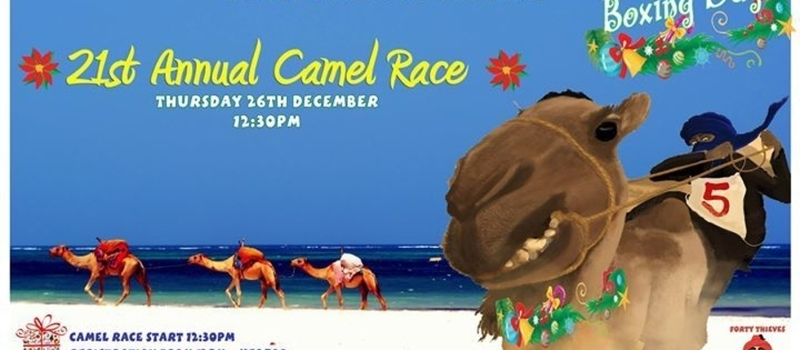 21st Camel Race - Open to all