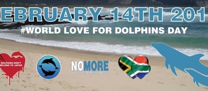 World Love for Dolphins Day - South Africa