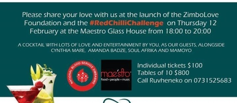ZimboLove Foundation Launch Fundraiser
