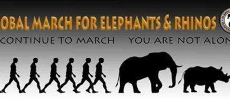 Global March For Africa's elephants And Rhinos-Nairobi