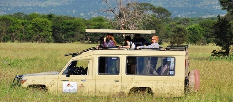 2 Day Tanzania Safari: Lake Manyara National Park and Ngorongoro Crater