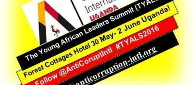 The Young African Leaders Summit 2016