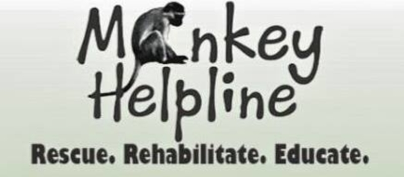 Monkey helpline Fundraiser Fashion Show hosted by Scarlett Paws